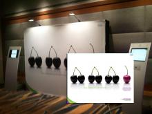 Large Format and Trade Show Displays